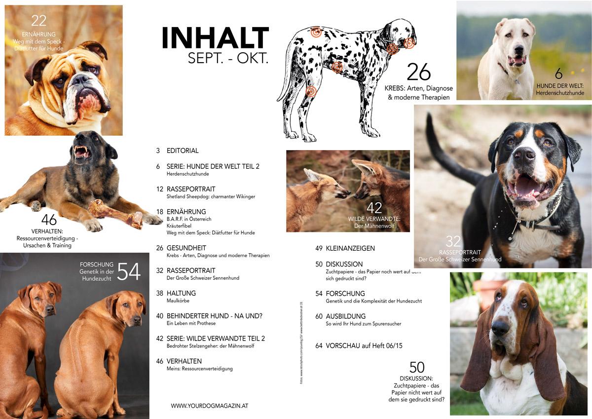 neue ausgabe your dog magazin 5 15. Black Bedroom Furniture Sets. Home Design Ideas