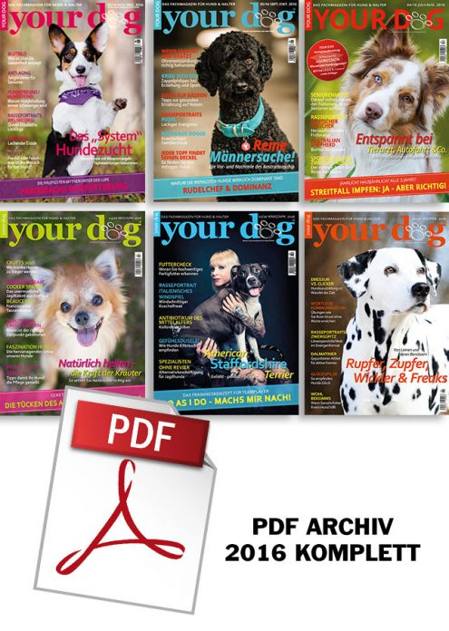 PDF ARCHIV 2016